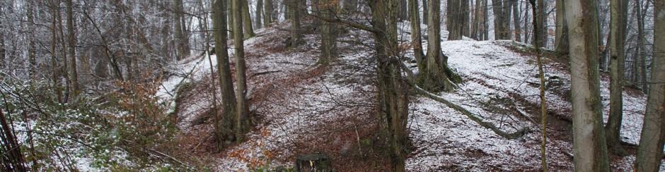 Archäologische Ausgrabung der Burg Wahlmich bei Waldaschaff