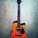 CD + Ibanez Western Gitarre