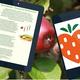 Online und Offline ausgestattet: Adventskalender + App