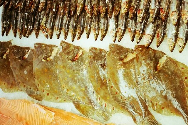 Herr Fischer Fischfeinkost Manufaktur