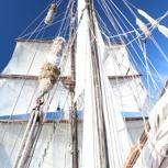 Fahrten-Seebär-Segel
