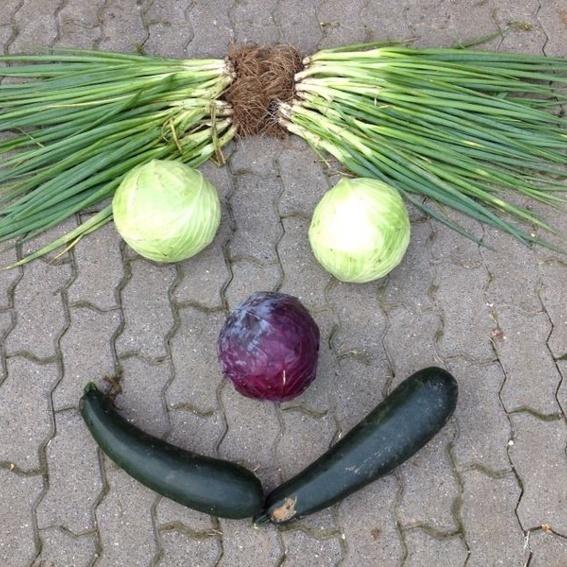 Pädagogisch wertvolles Gemüse