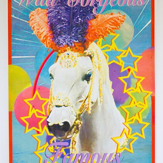 Poster - Wild, Gorgeous, Famous