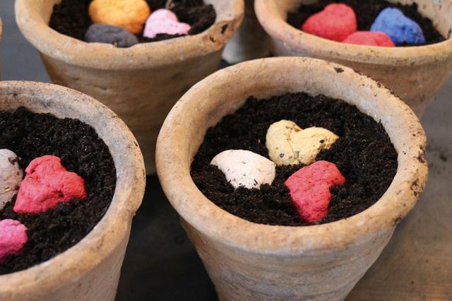 Paperblooms: Aus Papierresten wachsen bunte Blumen