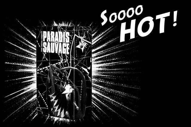 PSTMG - Paradis Sauvage The Meta Game