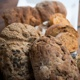 Felix`Brotland Brotbeutel inkl. zwei Brote