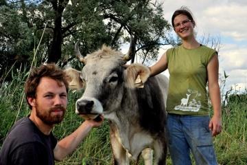 Käserei für Stolze Kühe