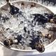 Einladung zur Kutter-Taufe inklusive Jungfernfahrt, Champagner, Sushi und mehr...