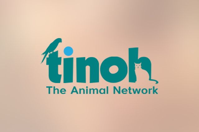Tinoh - The Animal Network