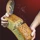 Brotbackkurs mit Verkostung