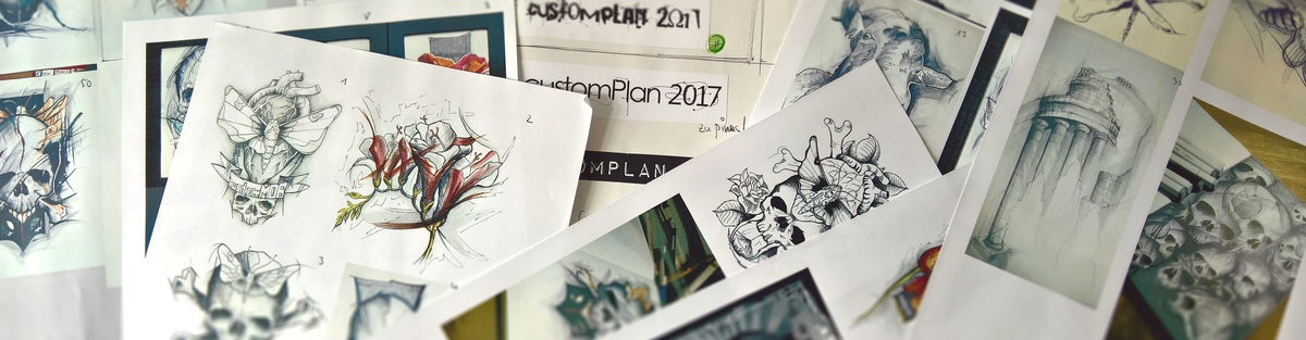 customPlan2017