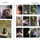 """1 Buch """"Paare"""", 1 Buch Deiner Wahl, 1 signierter Fotoabzug, 6 Postkarten"""