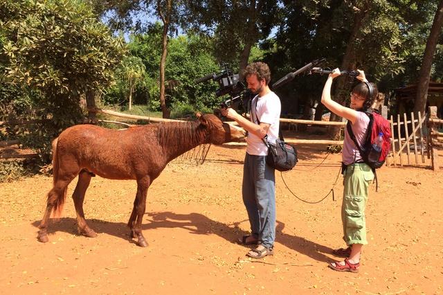 Aurovilles Kinder - Dokumentarfilm