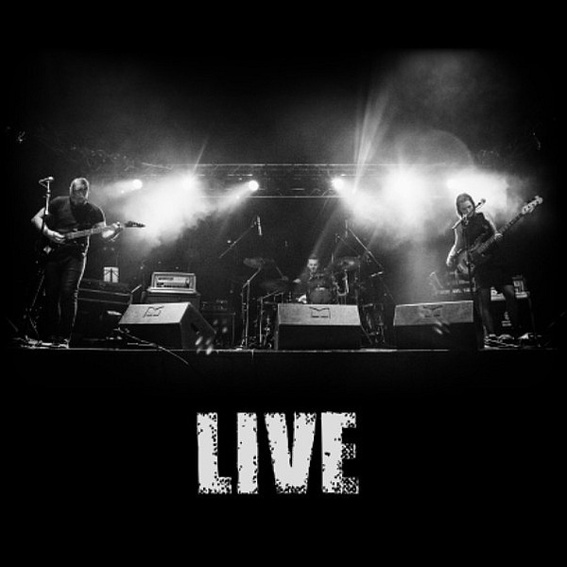 Exklusives Live-Konzert deiner Wahl
