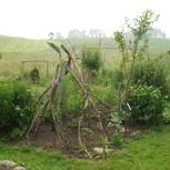 Video, 2 Jahre naturnahe Gartenlandwirtschaft