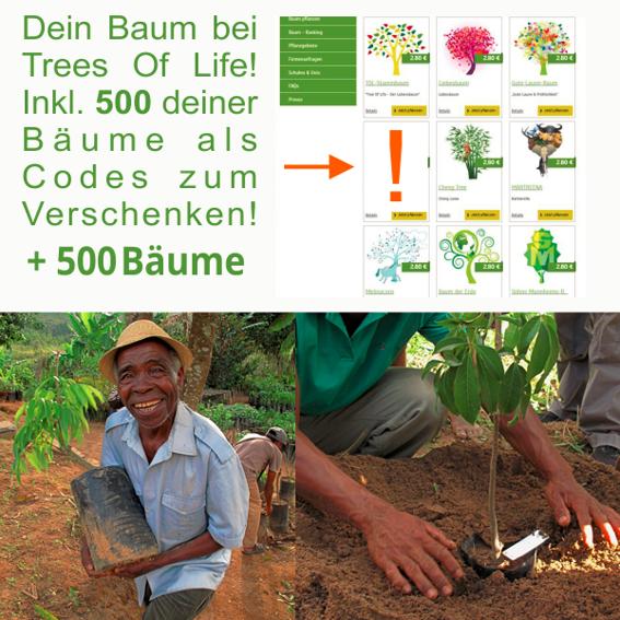 Dein Baum bei TOL+500 Bäume