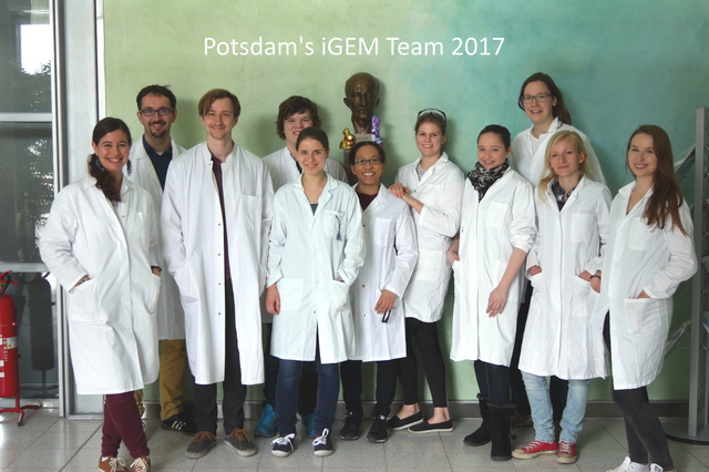 iGEM 2017 - Universität Potsdam