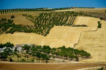 Forschungsaufenthalt in Andalusien zum Ökolandbau