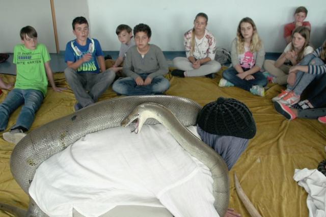 Der mit den Schlangen kriecht