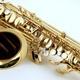 1 Saxofon-/Klarinetten-/Flötenstunde