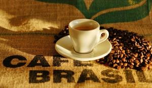 Zu Besuch beim Kaffee