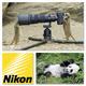 """Fotoworkshop """"Pandas & Co"""" für eine Person powered by Nikon, inkl. Buch"""