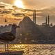 Führung durch Istanbul mit Türkisch-Crashkurs