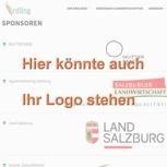 Erwähnung als Sponsor auf Homepage