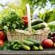 kleiner Obst- und Gemüsekorb