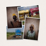 DIE FLUGBIENE - Unser Postkarten Set