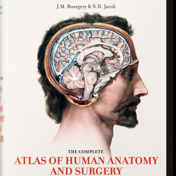 Atlas der menschlichen Anatomie und Chirurgie