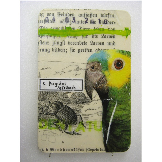 Kunstkreditkarte 'Vogel'
