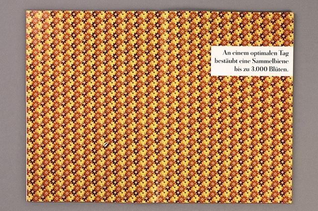 Tod einer Königin – Warum sterben Bienen wie die Fliegen?