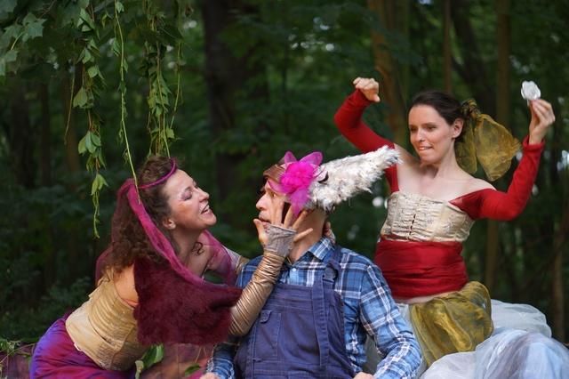 Ein Sommernachtstraum von W. Shakespeare
