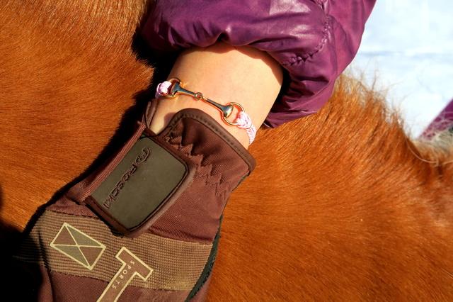 Stirnriemen und Armbänder für Reiter und Pferd