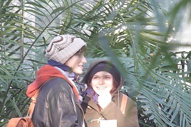 Palmengarten - Film