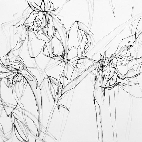 Meditatives Zeichnen mit Birgit Beßler