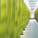 Besichtigung Algenfarm