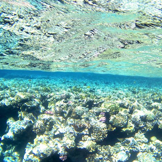 Eco Diving für Kinder