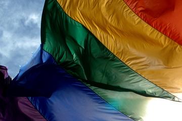 LGBTIQ*-Wahlstudie