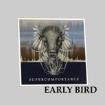 Early Bird CD