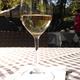 Eine ganze Kiste Wein vom Schweigener Sonnenberg (Pfalz)