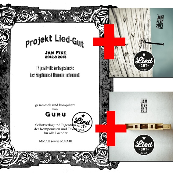 Projekt Liedgut - Buch & 2 CDs
