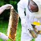 Kleiner Imkerlehrgang + eigenes Bienenvolk