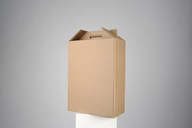 BOX2FLY - a carry-on luggage made of cardboard