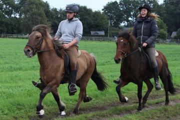 Das Glück der Erde,liegt auf dem Rücken der Pferde
