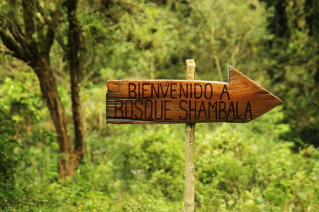 Bosque Shambala