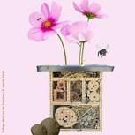 Hilfe für Wildbienen