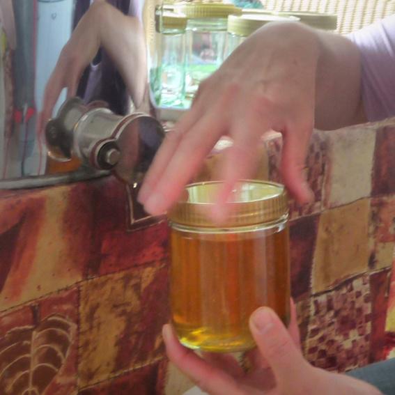 1 Glas Bamberger Lagenhonig mit Fotokarte
