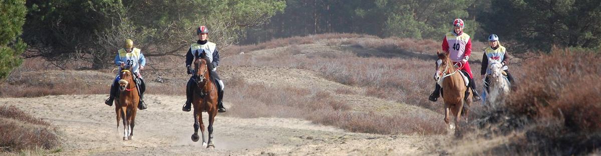 Verringerung von Ausscheiderquoten im Distanzsport